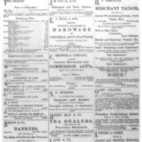 The Friend - 1885.04 - Newspaper