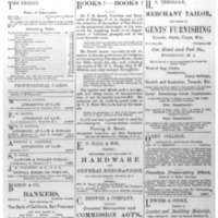The Friend - 1885.07 - Newspaper